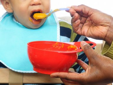 Gourmet Baby Food Latest Luxury Travel Trend