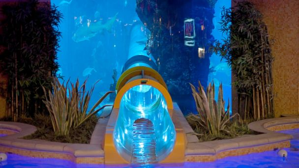 PHOTO: Awe-Inspiring Hotel Aquariums