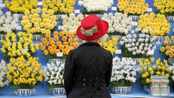 PHOTO: Chelsea Flower Show, London.