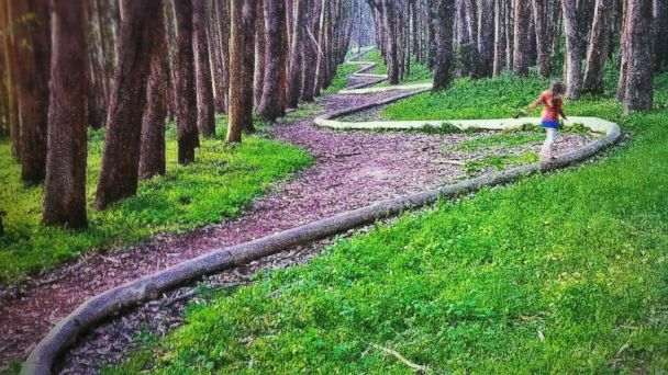 PHOTO: Andy Goldsworthy's Wooden Line, West Pacific Avenue, San Francisco, California