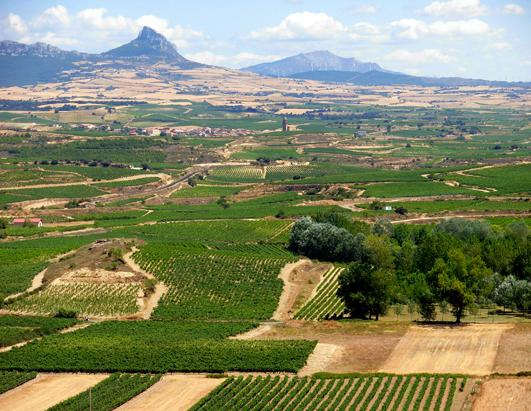 Top 10 Wine Travel Destinations of 2013 