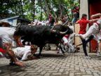 Revelers and Bulls Run Wild Through Spanish Town