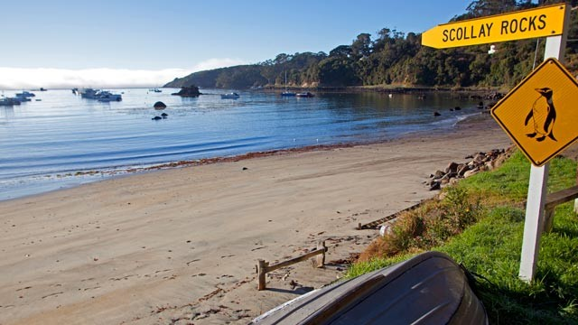 PHOTO: Stewart Island, New Zealand