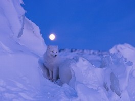 National Geographic Best Travel Photos 2013