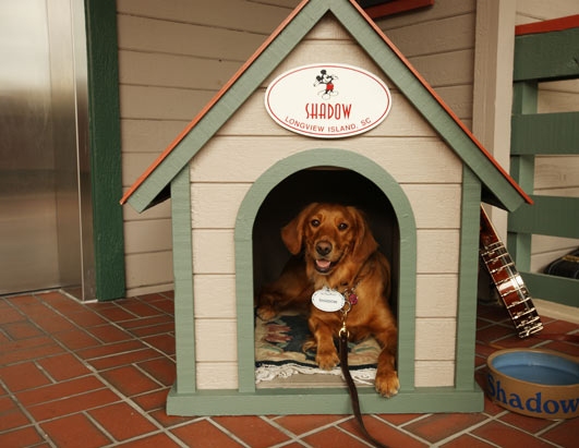golden retriever dog house. She now has her own custom dog