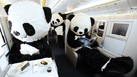 ht british airways panda2 tk 130612 wblog Giant Pandas Fly on BA