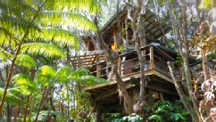 PHOTO: Exotic Treehouse at Kilauea Volcano on Big Island, Big Island, Hawaii