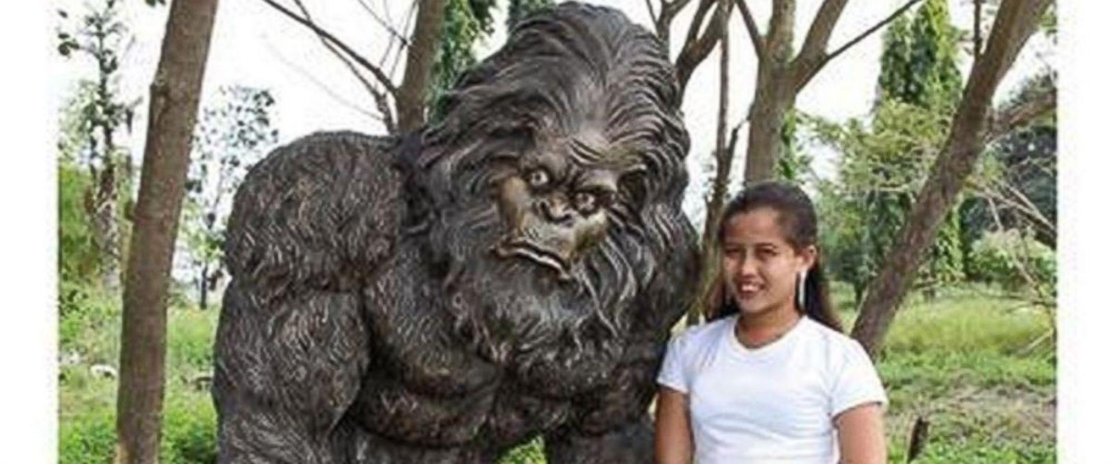 SkyMall Christmas Nightmare: Battles with Bigfoot - ABC News