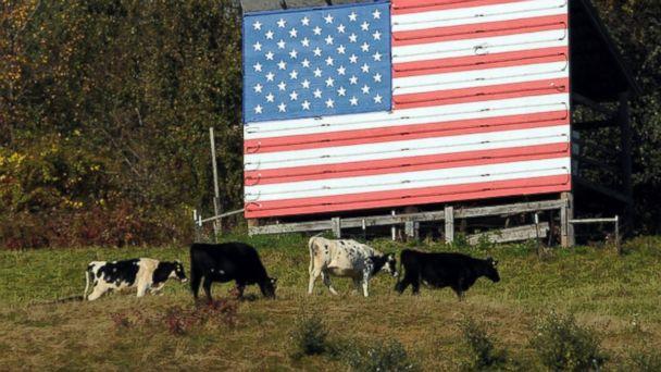PHOTO: Patriotic Pastures