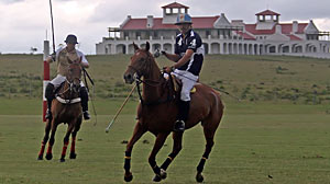 PHOTO Polo players. More hotels than ever are offering unique amenities for guests.
