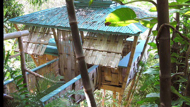 PHOTO: Tropical Treehouse, Rincon, Puerto Rico