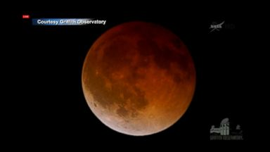 Blood Moon Captivates Stargazers