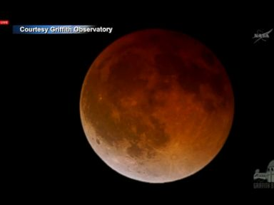 Blood Moon Captivates Stargazers