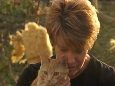 WATCH: Family Cat Emerges From Wreckage After Deadly Twister Strike