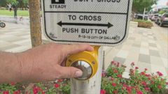 VIDEO: Does the Crosswalk Button Work?