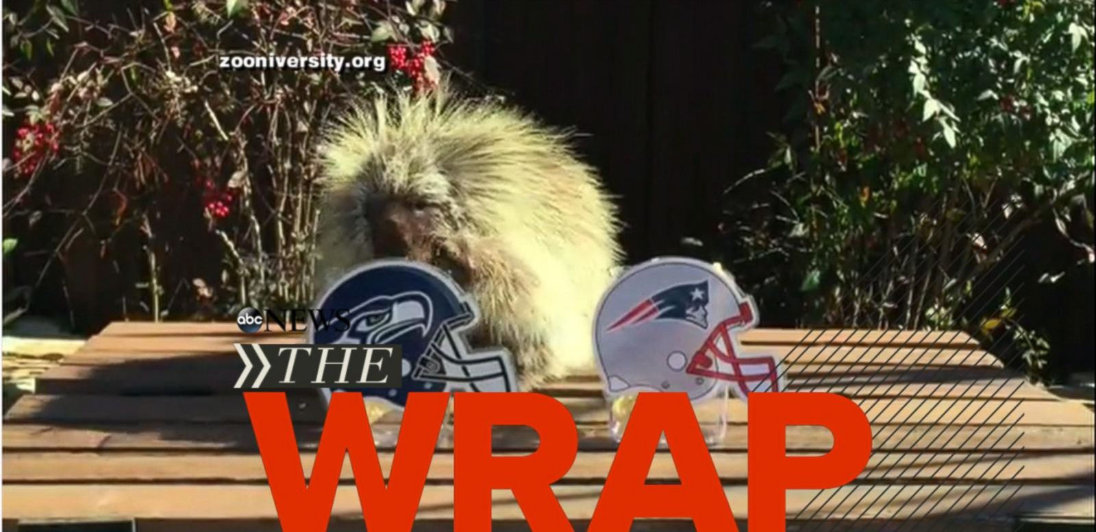 "VIDEO: Aaron Hernandez opening statements heard; Census Bureau finds one in five children on food stamps; Psychic porcupine ""Teddy Bear"" predicts super bowl."