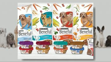purina pet food life cycle One way couponers find coupons for their regular pet food is by contacting the pet food  cycle purina deli-cat cat food  make life easier by using the p&g.