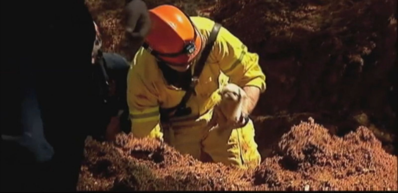 VIDEO: Toshi, a 6-week-old puppy, was trapped in a six-foot deep hole near an Atlanta-area apartment building.