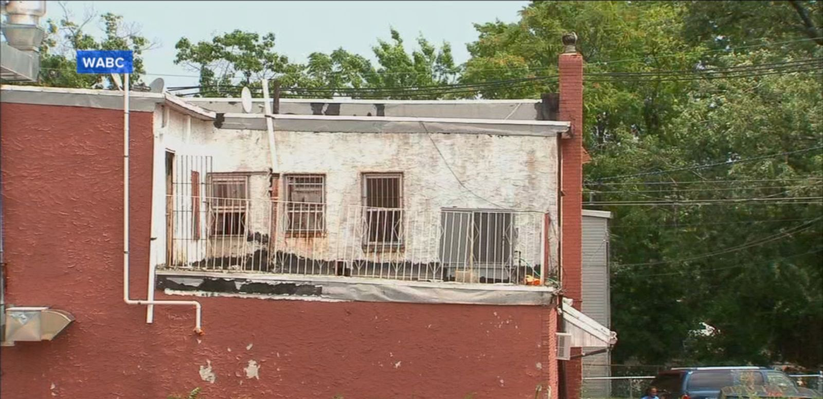 VIDEO: Officers in Newark, NJ, arrived at the rooftop and found two dogs being burned by the hot tar.