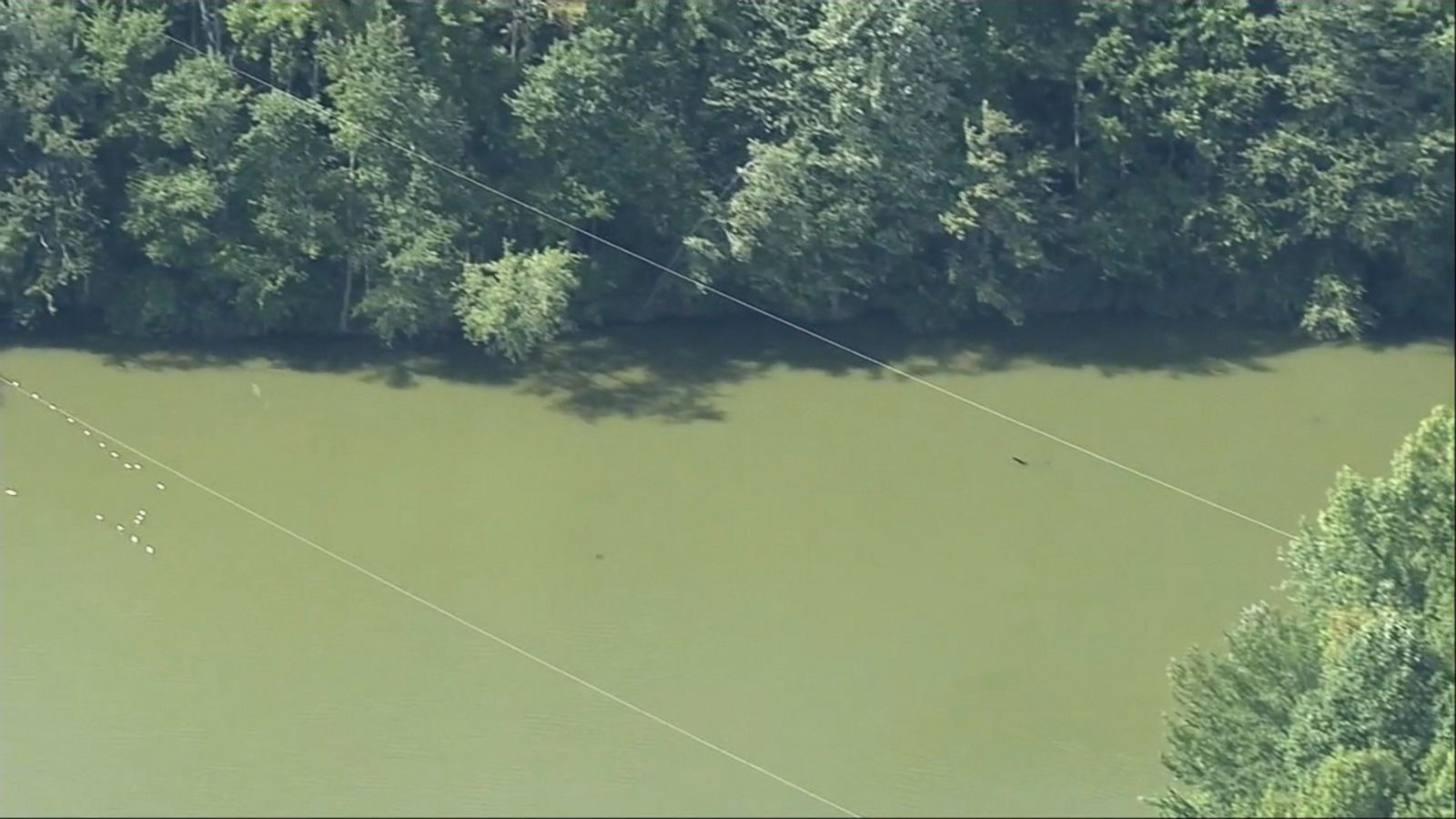 A 59-year-old woman has died after falling approximately 40 feet from a zip line at the Lums Pond State Park in Delaware.