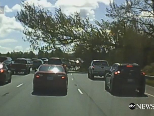 WATCH:  Dashcam video captures falling tree as it injures driver