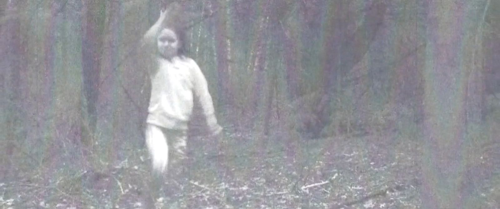 VIDEO: The blurry photo was captured by a camera in a wooded area in Cambridge, New York.