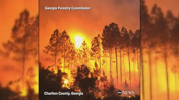 VIDEO: Video shows an extremely close view of a wildfire raging through Okefenokee National Wildlife Refuge in Georgia as firefighters battle the blaze.