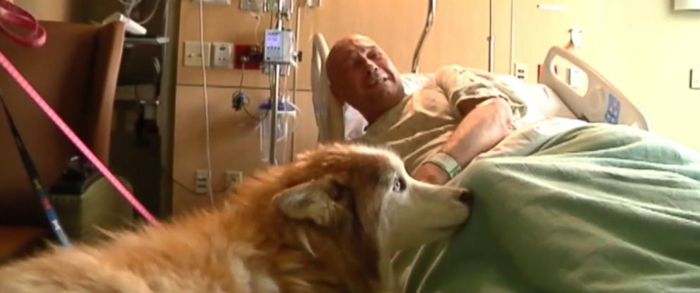 "VIDEO: The thought of losing his dogs ""almost made me cry,"" Ron Belcher said."