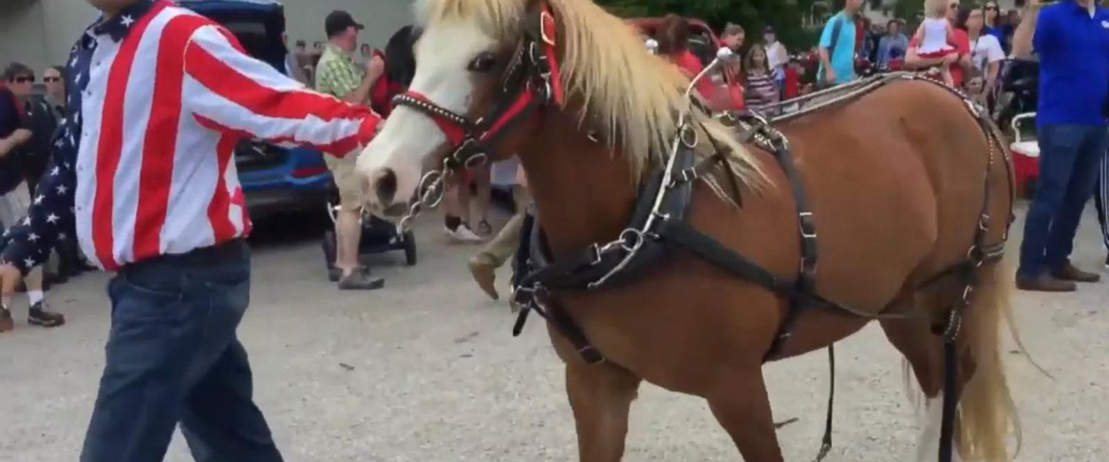 VIDEO: Ponies running scared injure 3 in Wisconsin Memorial Day parade
