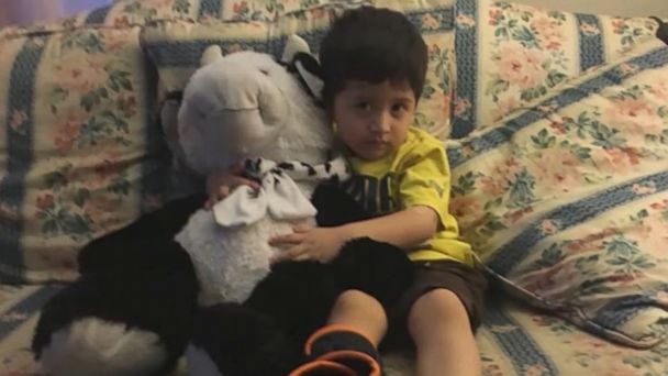 VIDEO: A 2-year-old boy's fall from a second-floor window was softened by his stuffed cow.