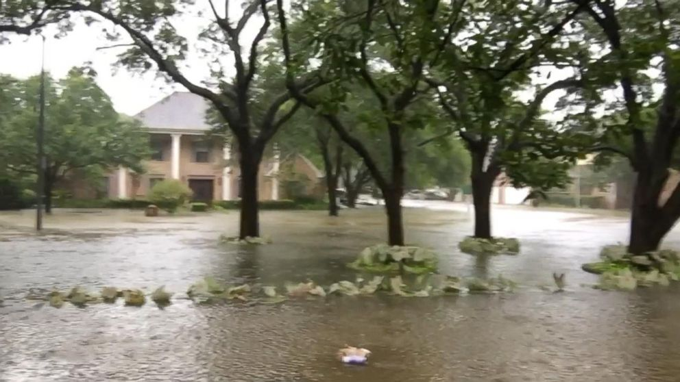 Harvey brings record flooding to Houston area Video - ABC News