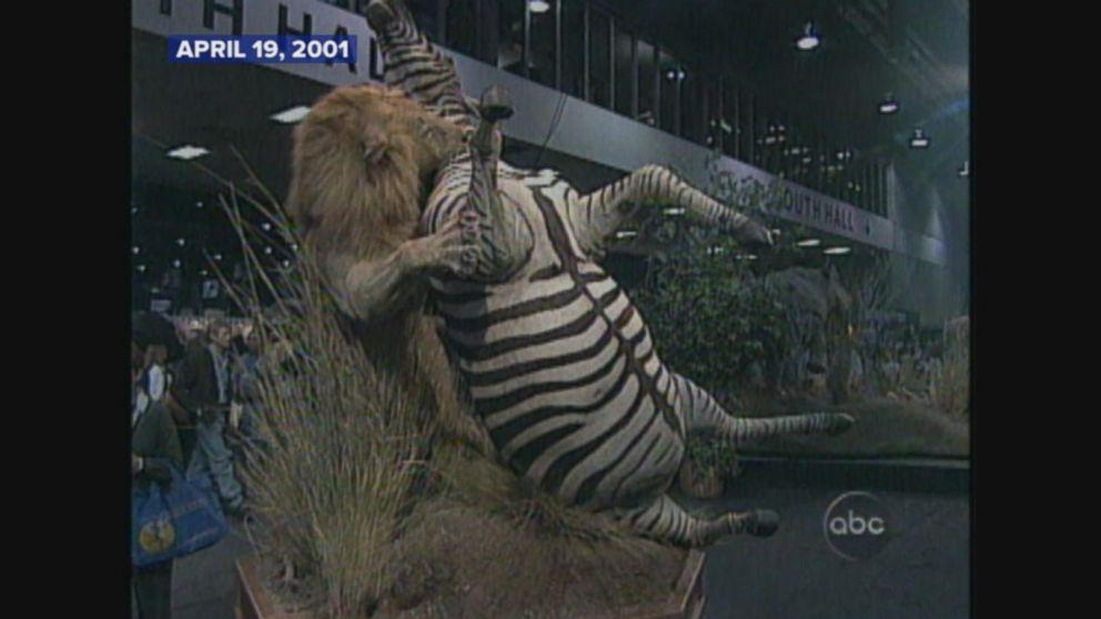 April 19, 2001: An inside look into Safari Club International