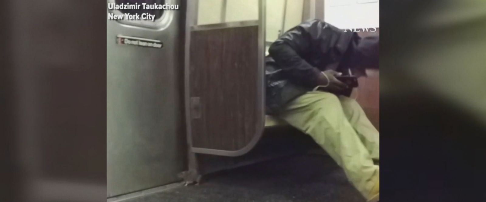 The rodent caused quite a commotion when it got trapped inside a subway car.