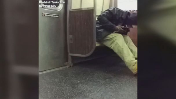 'null' from the web at 'http://a.abcnews.com/images/US/171120_social_subway_rat_a_train_MIX_16x9_608.jpg'