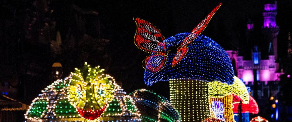 PHOTO: A Jittering insects light up the parade route in beautiful, bright colors during the Main Street Electrical Parade at Disneyland park. The Main Street Electrical Parade will run for a limited-time, through June 18, 2017, at Disneyland park.