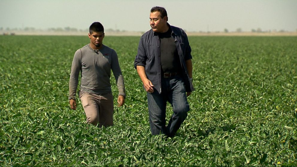 PHOTO: ABCs John Quinones walks with Edgar Segura, a high school student in Mendota, California, who dreams of playing college football and works in the tomato and cantaloupe fields to help support his single mom and little brother.