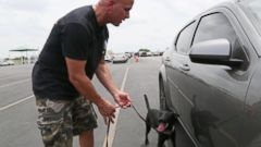 PHOTO: Brad Croft of Universal K9 has shown that police departments can get the same work for next to nothing if they train the countless dogs in US animal shelters.