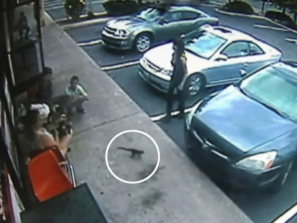 PHOTO: A California woman was bitten outside of a pizzeria by capuchin monkey.