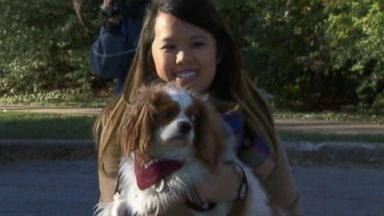 PHOTO: Nina Pham reunites with her dog Bentley, Nov. 1, 2014.