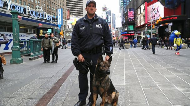 ABC nypd officer and dog 1 sr 140327 16x9 608 Army Vet, Military Dog Duo Keeps NYC Subways Safe