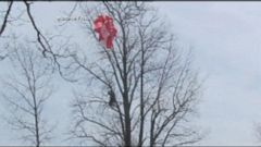 PHOTO: Vermont pilot Dan Marcotte survives a fiery crash by parachuting of plane.