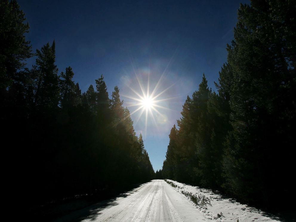 PHOTO: Sunlight illuminates a country road covered in snow near Fox Park in Medicine Bow National Forest in this Oct. 25, 2007 file photo.