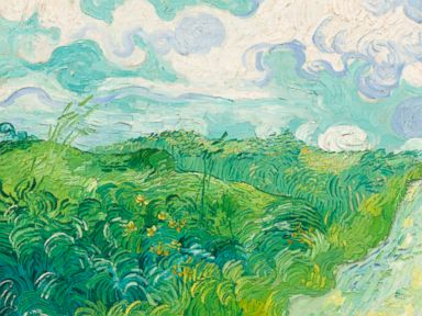 PHOTO: The Green Wheat Fields, Auvers by Vincent Van Gogh that has been hidden away at a Virginia estate for decades, will have a new home at the National Gallery of Art.
