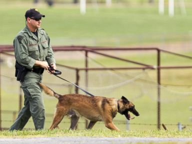 PHOTO: A West Virginia Police officer and a dog walk around the perimeter of Philip Barbour High School grounds following a hostage situation, Aug. 25, 2015, in Philippi, W.Va.