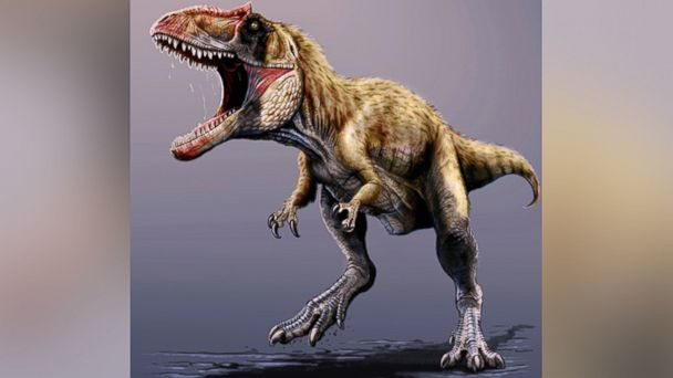 AP Siats meekerorum2 ml 131122 16x9 608 New Dinosaur That Rivaled T Rex Discovered in Utah