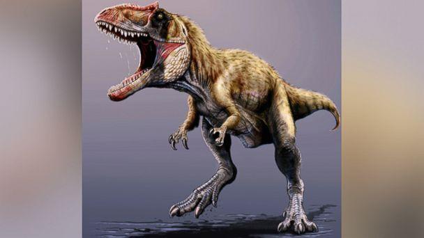 AP Siats meekerorum2 ml 131122 16x9 608 New Dinosaur That Rivaled T Rex Discovered in Utah