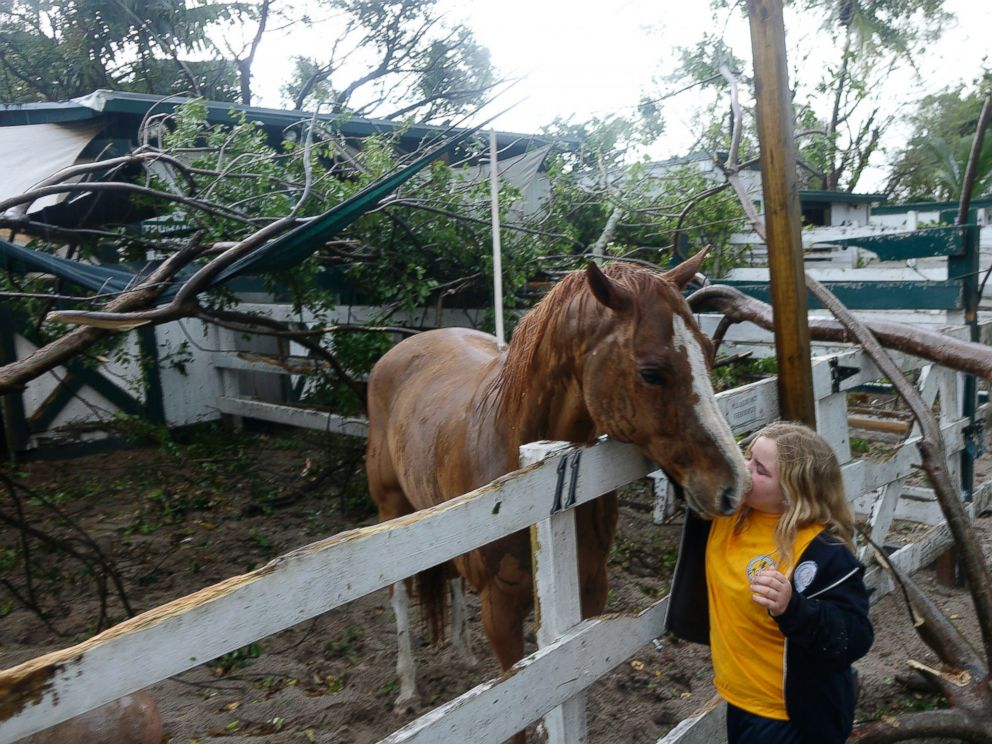 PHOTO: Emma Loesel, 9, comforts her horse, Truman, after a tree had fallen on his stable at Sand & Spurs equestrian park in Pompano Beach, Fla., Feb. 16, 2016.
