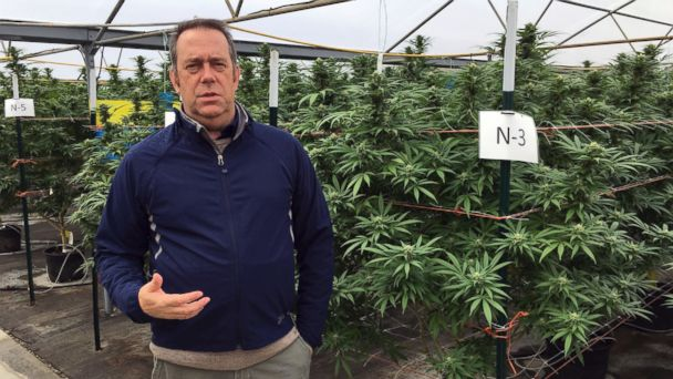 PHOTO: Beau Whitney, a vice president of Golden Leaf, a cannabis company, discusses on the company's 97-acre property near Aurora, Oregon, Oct. 4, 2016 how a county ban on recreational marijuana has harmed the company's business.