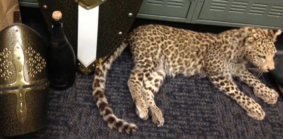 PHOTO: Items that authorities have recovered from a huge haul of high-end swag that thieves snagged during a party at an empty mansion -?? including armor, shields and a stuffed snow leopard worth $250,000.