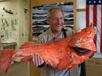 PHOTO: Record Rockfish Caught